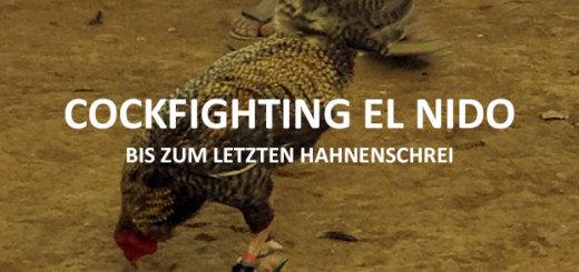 Feature_Bild_cockfighting_El_Nido