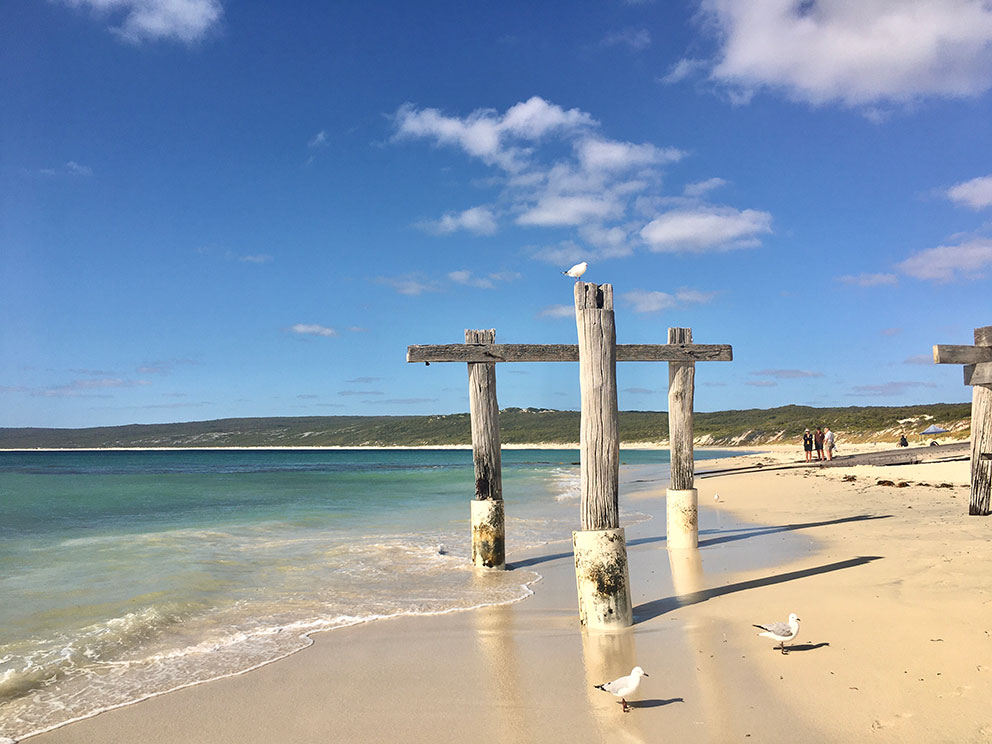snippets-of-a-traveller-hamelin-bay